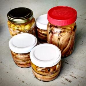 Sardinhas e manjubas anchovadas